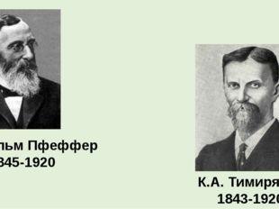 К.А. Тимирязев 1843-1920 Вильгельм Пфеффер 1845-1920
