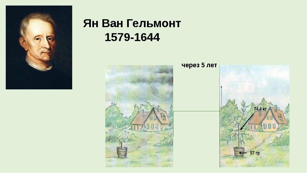 Ян Ван Гельмонт 1579-1644 через 5 лет Ученые на страница книги
