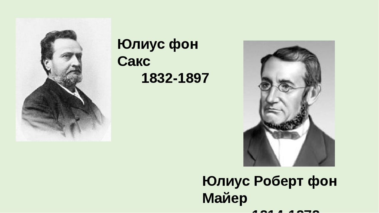 Юлиус фон Сакс 1832-1897 Юлиус Роберт фон Майер 1814-1878