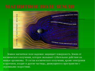 Земное магнитное поле надежно защищает поверхность Земли от космического изл