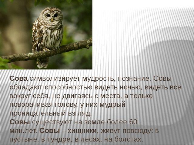 Сова символизирует мудрость, познание. Совы обладают способностью видеть ночь...