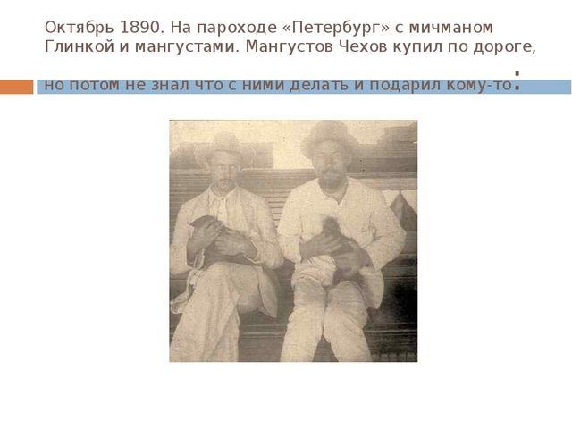 Октябрь 1890. На пароходе «Петербург» с мичманом Глинкой и мангустами. Мангус...
