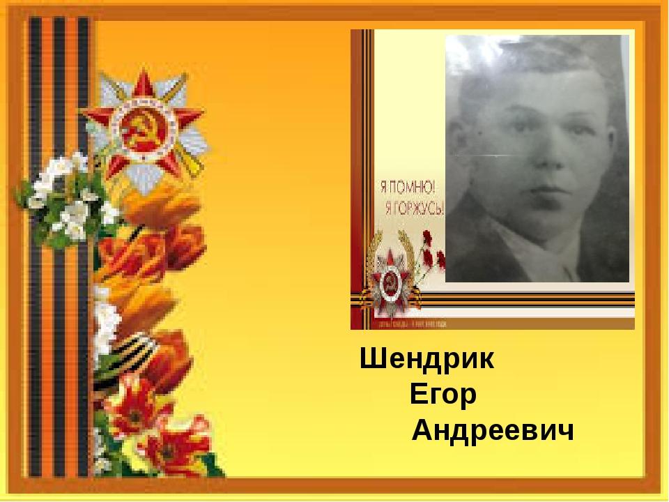 Шендрик Егор Андреевич