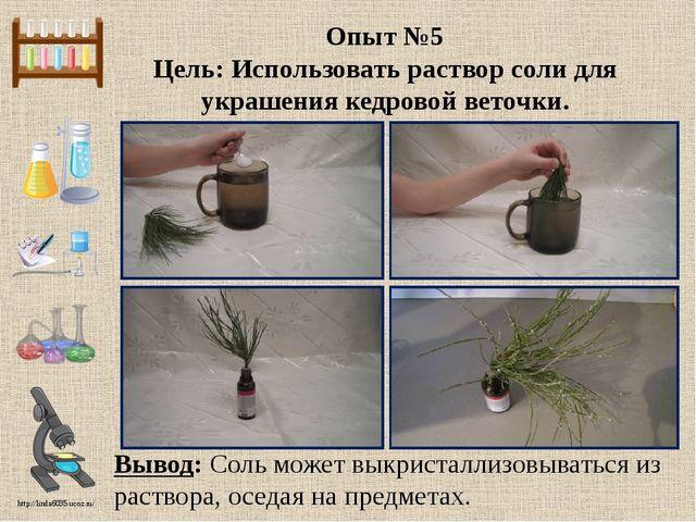 Опыт №5 Цель: Использовать раствор соли для украшения кедровой веточки. Вывод...