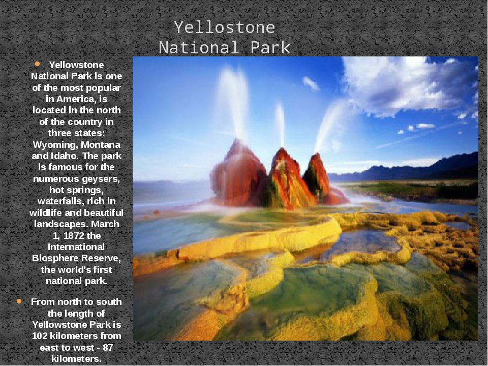 Yellowstone National Park is one of the most popular in America, is located i...