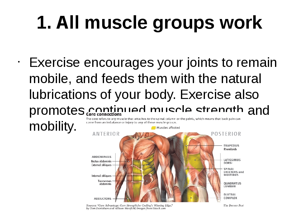 1. All muscle groups work Exercise encourages your joints to remain mobile, a...