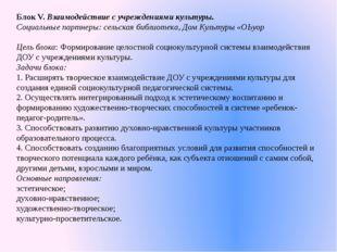 Блок V. Взаимодействие с учреждениями культуры. Социальные партнеры: сельская
