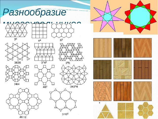 Разнообразие многоугольников