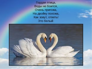Гордая птица, Воды не боится, Очень пригожа, На двойку похожа, Как зовут, отв