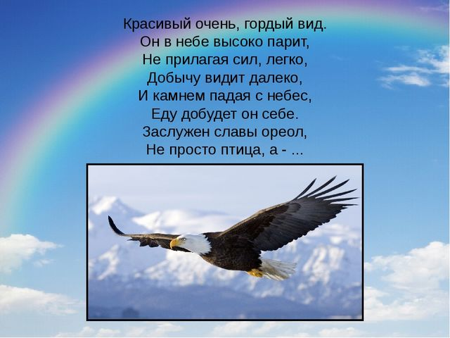 Красивый очень, гордый вид. Он в небе высоко парит, Не прилагая сил, легко, Д...