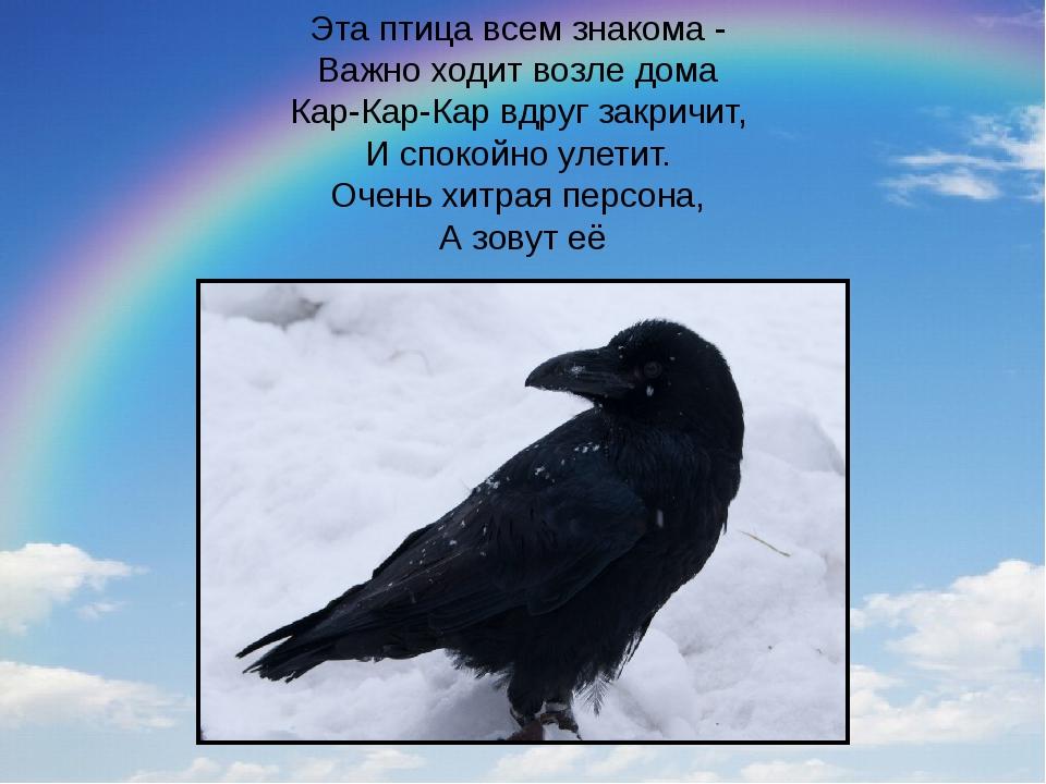 Эта птица всем знакома - Важно ходит возле дома Кар-Кар-Кар вдруг закричит,...