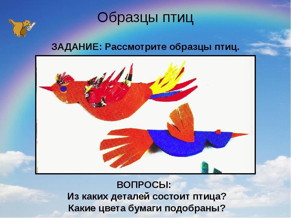 Образцы птиц ЗАДАНИЕ: Рассмотрите образцы птиц. ВОПРОСЫ: Из каких деталей сос...