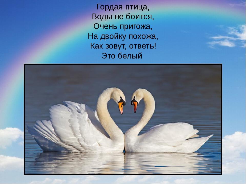 Гордая птица, Воды не боится, Очень пригожа, На двойку похожа, Как зовут, отв...
