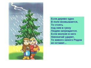 Если дерево одно В поле возвышается, То стоять под ним в грозу Людям запрещае