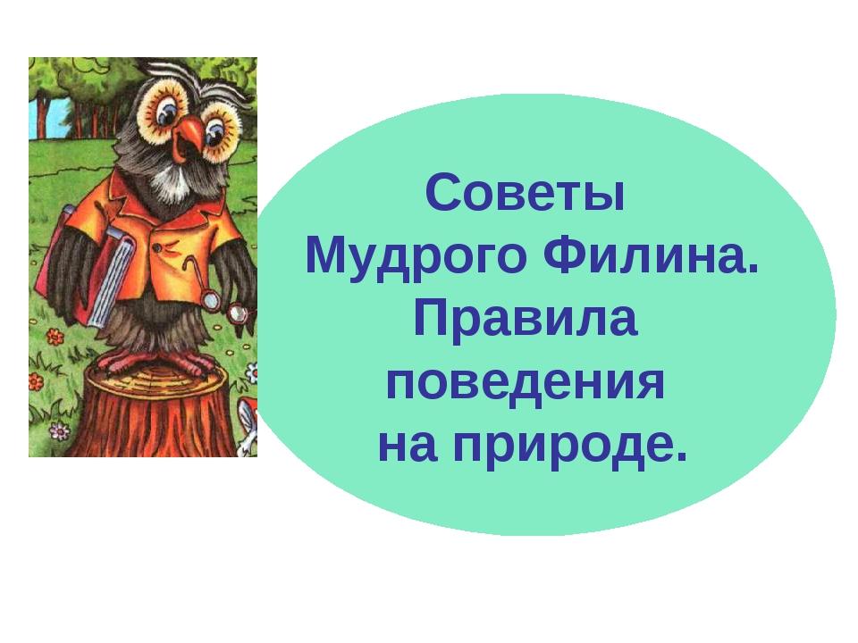 Советы Мудрого Филина. Правила поведения на природе.
