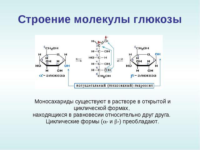 Строение молекулы глюкозы Моносахариды существуют в растворе в открытой и цик...