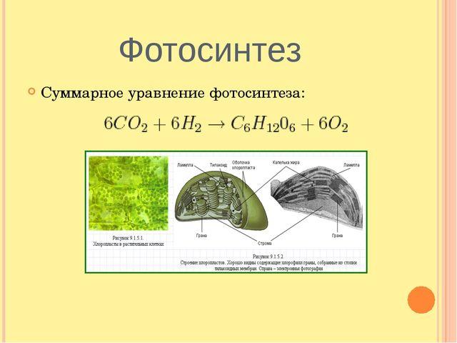 Фотосинтез Суммарное уравнение фотосинтеза: