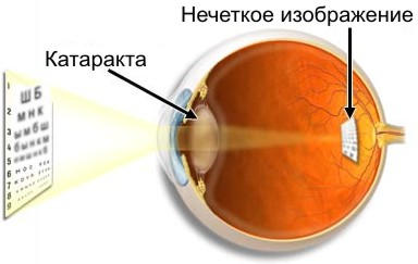 hello_html_1fa8760f.jpg