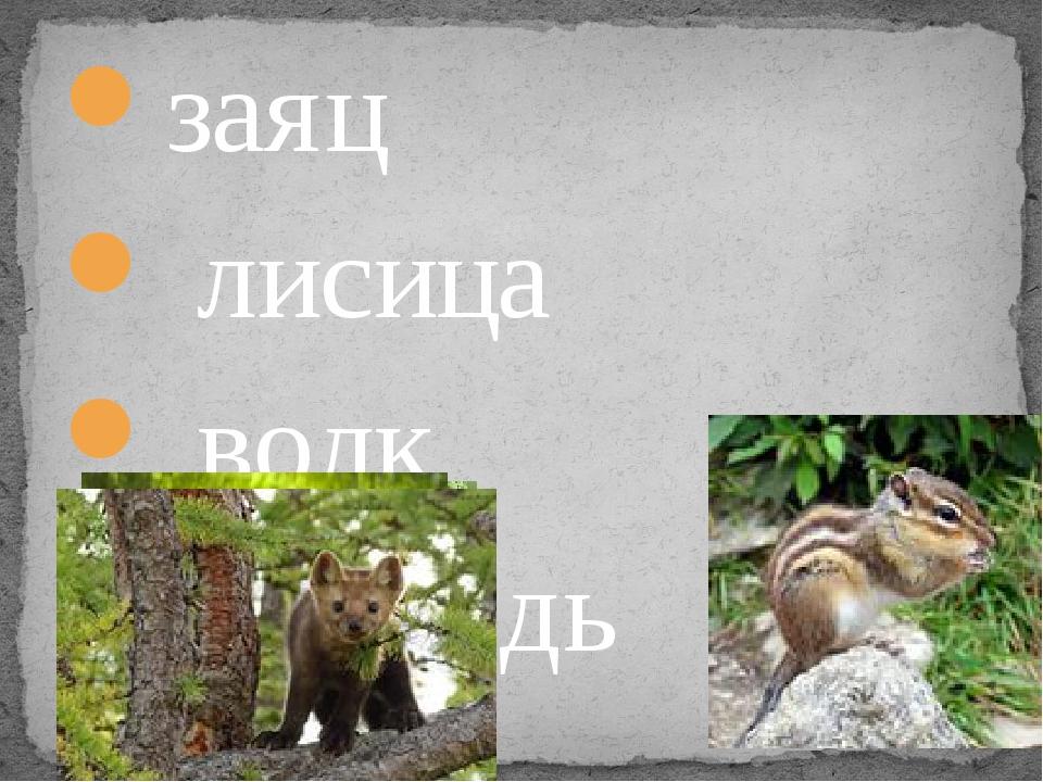 заяц лисица волк медведь белка куница лось крот барсук бобр бурундук кабан мы...
