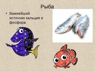 Рыба Важнейший источник кальция и фосфора
