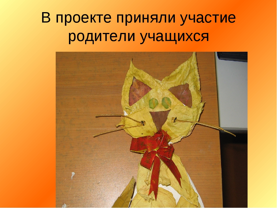 В проекте приняли участие родители учащихся