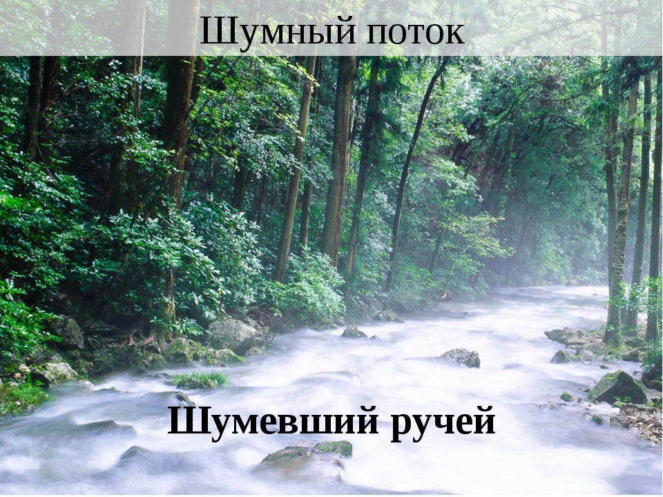 Шумный поток Шумевший ручей