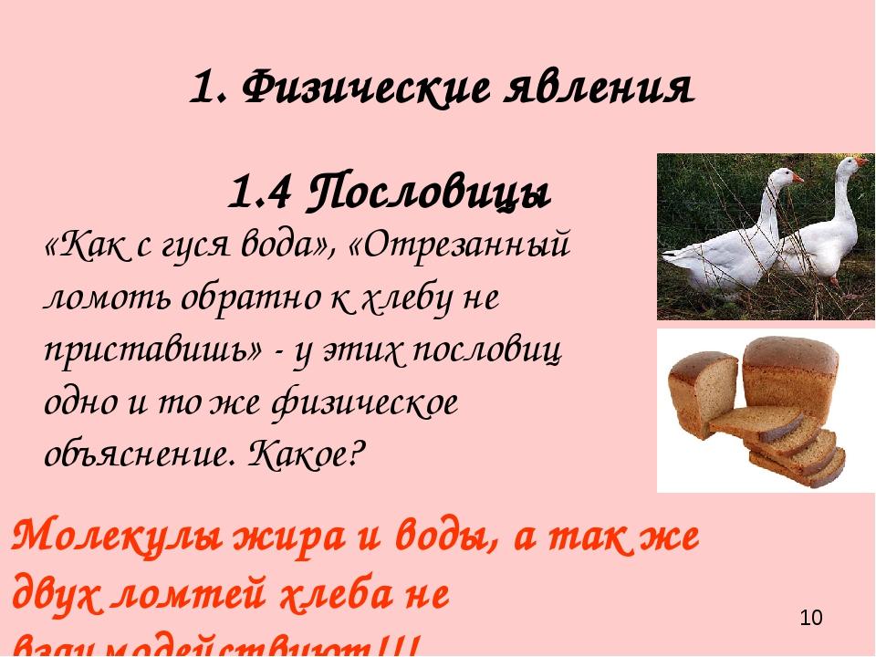 1. Физические явления 1.4 Пословицы «Как с гуся вода», «Отрезанный ломоть обр...