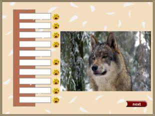 a fox a tiger a duck a mouse a horse a wolf a rabbit a parrot a cat a dog 0