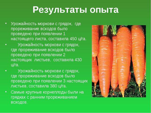 Результаты опыта Урожайность моркови с грядок, где прореживание всходов было...