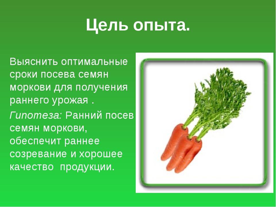 Цель опыта. Выяснить оптимальные сроки посева семян моркови для получения ран...