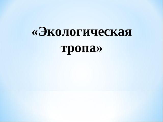«Экологическая тропа»
