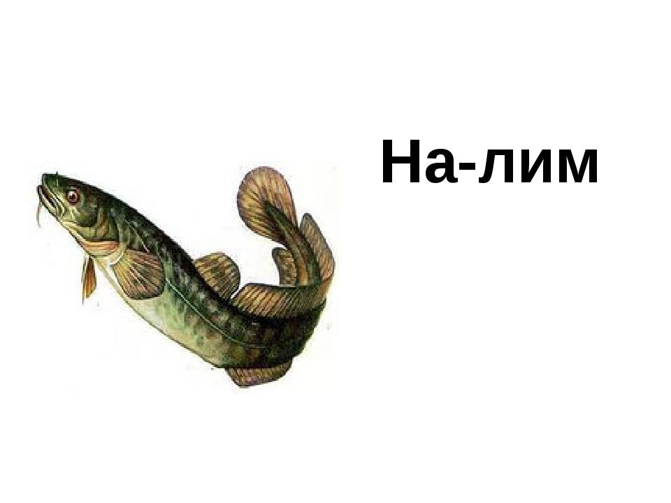 На-лим