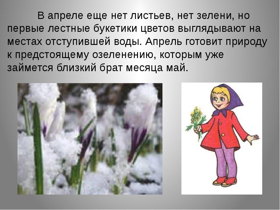 В апреле еще нет листьев, нет зелени, но первые лестные букетики цв...