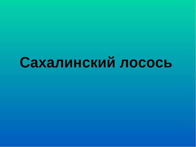 Сахалинский лосось