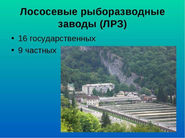Лососевые рыборазводные заводы (ЛРЗ) 16 государственных 9 частных