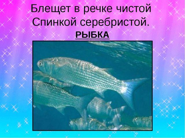 Презентация урок изо 1 класс по теме красивые рыбы монотипия украшение рыбок узорами чешуи