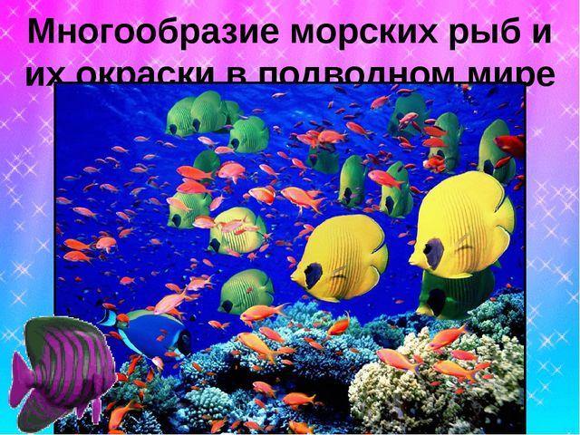 Многообразие морских рыб и их окраски в подводном мире