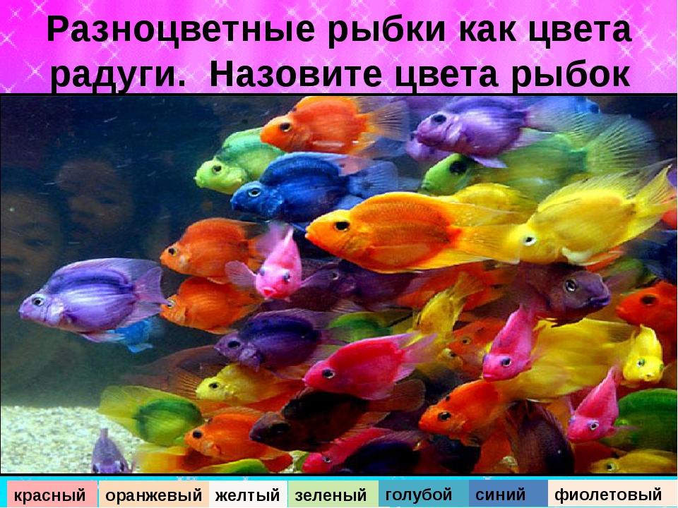 Разноцветные рыбки как цвета радуги. Назовите цвета рыбок красный оранжевый ж...