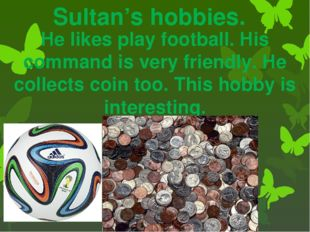 Sultan's hobbies. He likes play football. His command is very friendly. He co