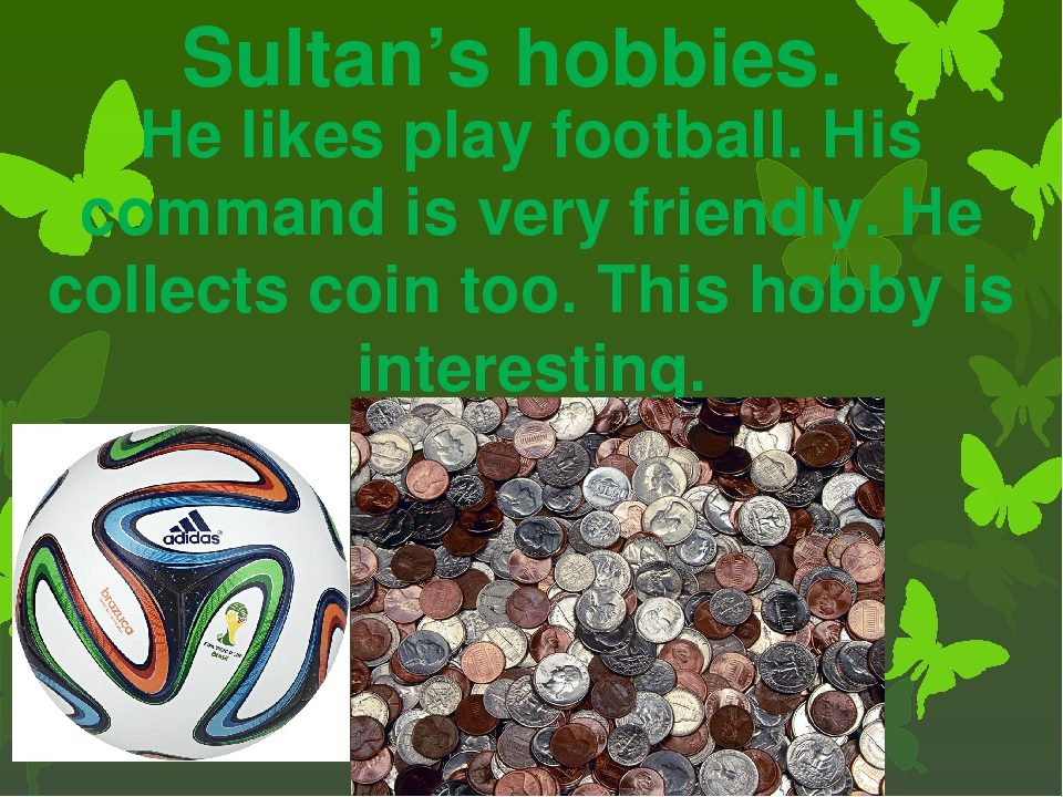 Sultan's hobbies. He likes play football. His command is very friendly. He co...