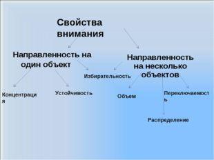 Направленность на один объект Направленность на несколько объектов Концентрац