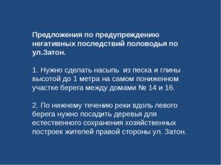 Предложения по предупреждению негативных последствий половодья по ул.Затон. 1