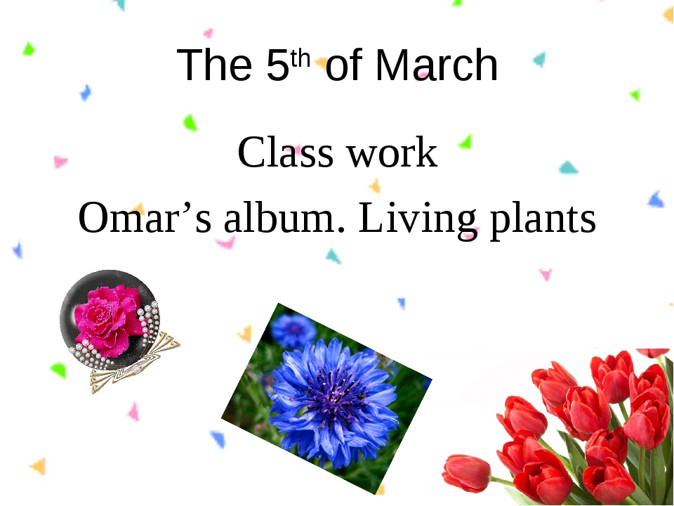 The 5th of March Class work Omar's album. Living plants