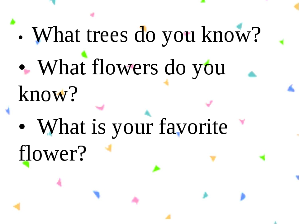•  What trees do you know? •  What flowers do you know? •  What is your favor...