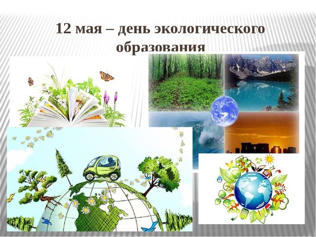12 мая – день экологического образования