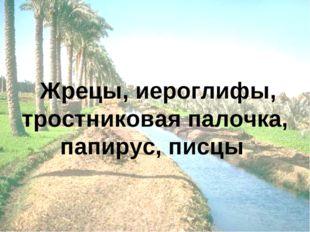 Жрецы, иероглифы, тростниковая палочка, папирус, писцы
