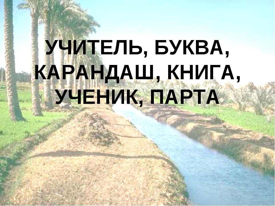 УЧИТЕЛЬ, БУКВА, КАРАНДАШ, КНИГА, УЧЕНИК, ПАРТА