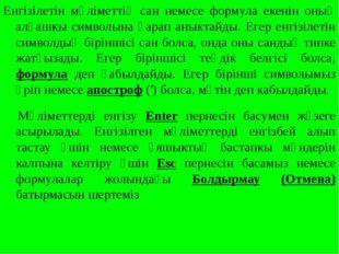 Енгізілетін мәліметтің сан немесе формула екенін оның алғашкы символына қарап