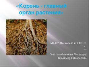 «Корень- главный орган растения» МКОУ Песковская ООШ № 1 Учитель биологии Ме