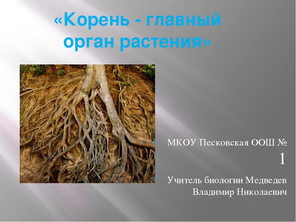 «Корень- главный орган растения» МКОУ Песковская ООШ № 1 Учитель биологии Ме...